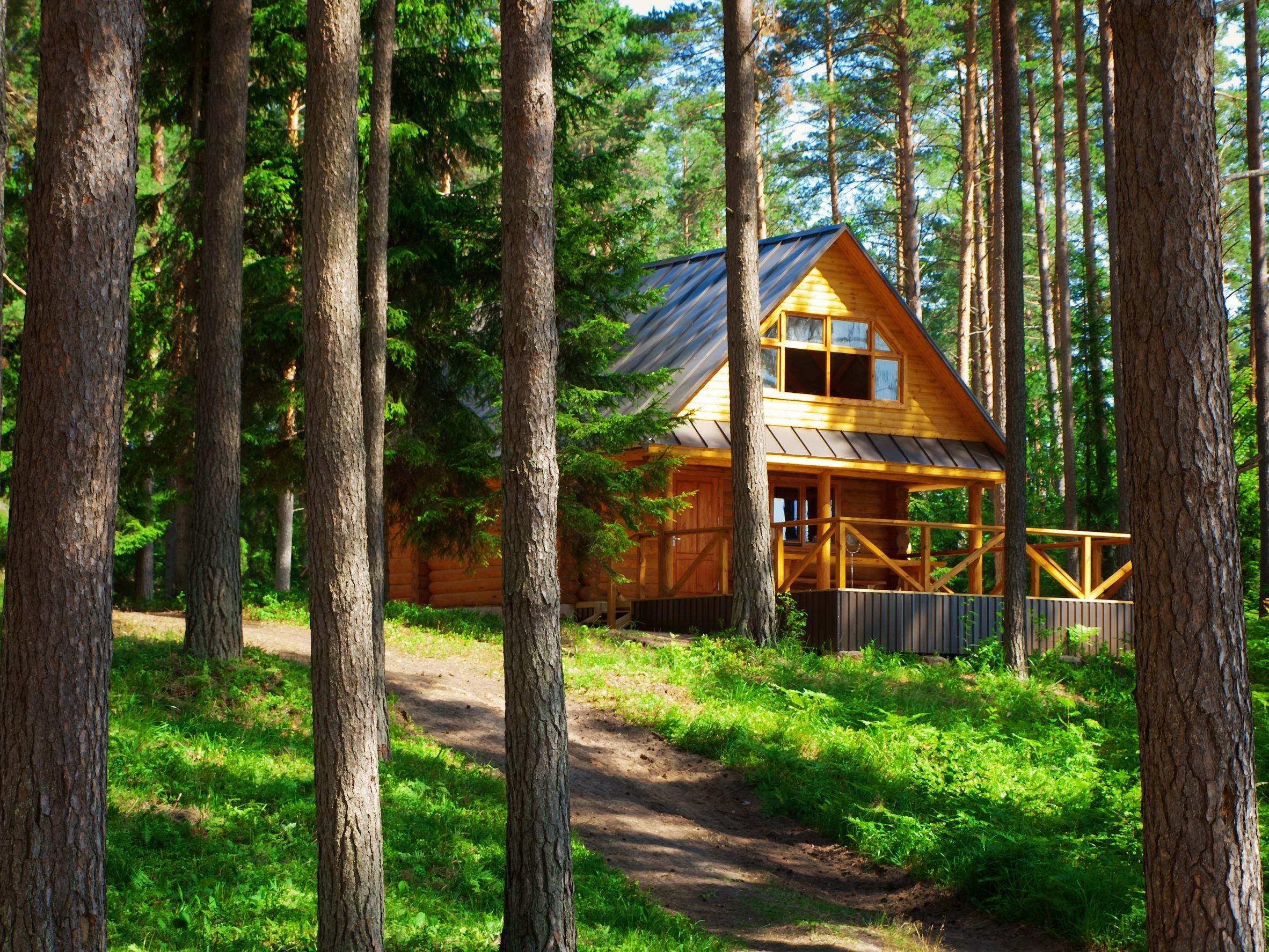 Doyle Log Home Restoration - Restoring, Repairing, and